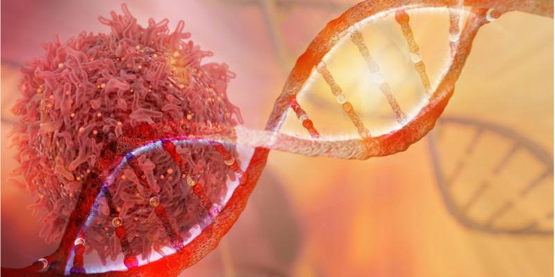 Tumoren te lijf met het eigen immuunsysteem