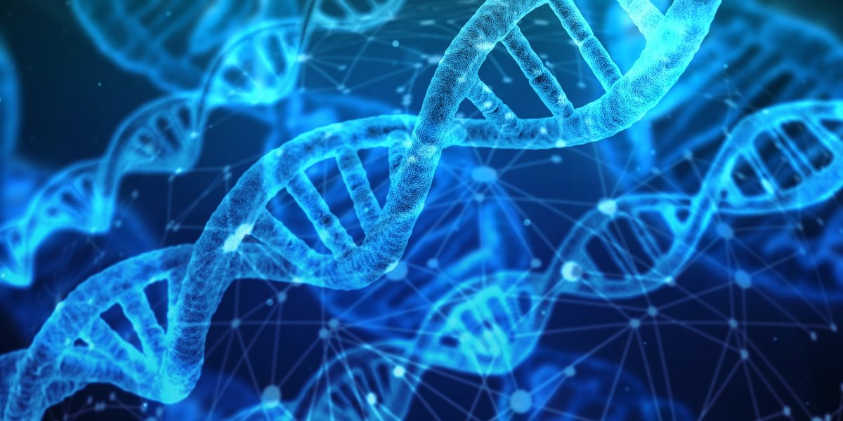 Lab-on-a-chip kan al op plaats delict DNA detecteren