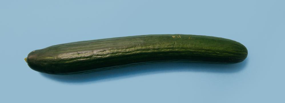 Welkom in de komkommertijd