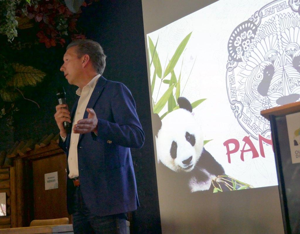 Hoe twee panda's Ouwehands Dierenpark weer op de kaart zetten