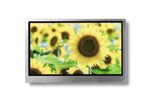 4,3 inch IPS TFT-LCD-module met grote kijkhoek