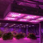 Kleuren en keuzes voor LED applicaties